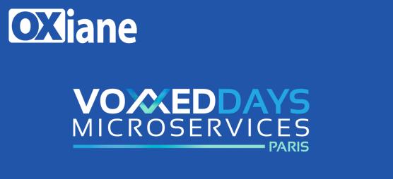 voxxeddays_microservices_icon