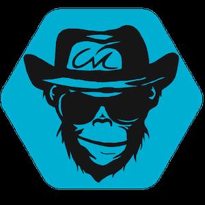 chaos-monkey - chaos engineering
